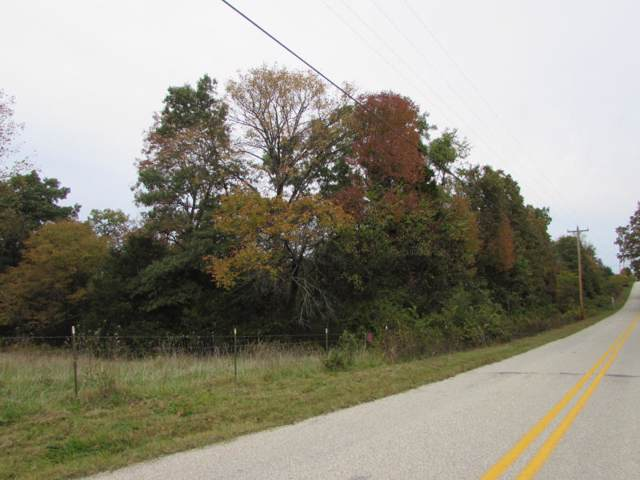 Tbd Deer Lane, Kirbyville, MO 65679 (MLS #60149690) :: Massengale Group