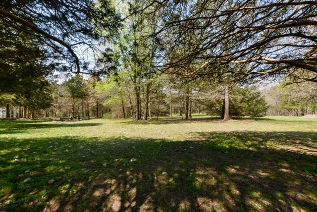 Tbd Lot Kings River Road (Tr-2Ptl9), Shell Knob, MO 65747 (MLS #60149745) :: Sue Carter Real Estate Group