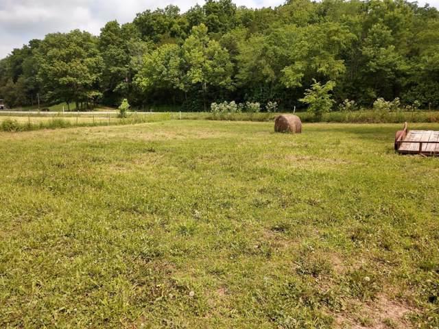 25 Manning Drive, Crane, MO 65633 (MLS #60149756) :: Sue Carter Real Estate Group