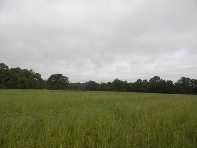 Lot 4 E Farm Rd 94, Strafford, MO 65757 (MLS #60149774) :: Team Real Estate - Springfield
