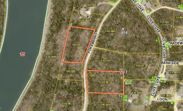Lot 4 Pokeberry, Kimberling City, MO 65686 (MLS #60149825) :: Weichert, REALTORS - Good Life