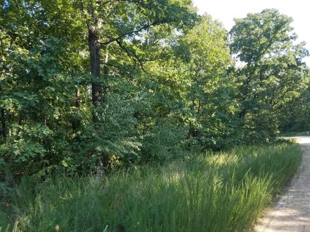 00 N Highway, Humansville, MO 65674 (MLS #60149880) :: Sue Carter Real Estate Group