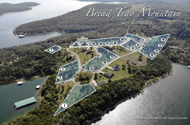Lot 1 Bread Tray Mountain Estates, Lampe, MO 65681 (MLS #60149933) :: The Real Estate Riders