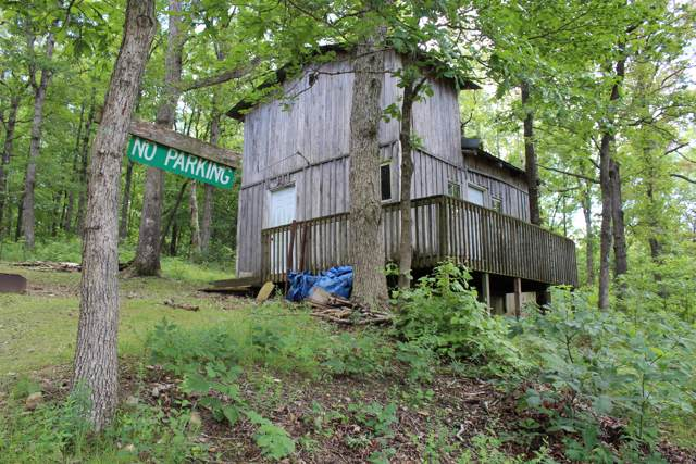 000 State Highway Vv, Seymour, MO 65746 (MLS #60149936) :: Sue Carter Real Estate Group