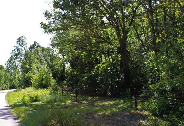 000 State Highway V, Seymour, MO 65746 (MLS #60149946) :: Sue Carter Real Estate Group