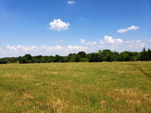 2097-Tract 2 State Hwy Pp, Republic, MO 65738 (MLS #60150108) :: Sue Carter Real Estate Group
