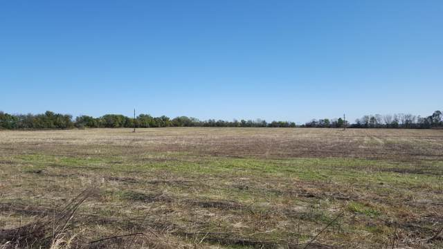 2062 S Farm Road 107, Springfield, MO 65802 (MLS #60150121) :: Winans - Lee Team | Keller Williams Tri-Lakes