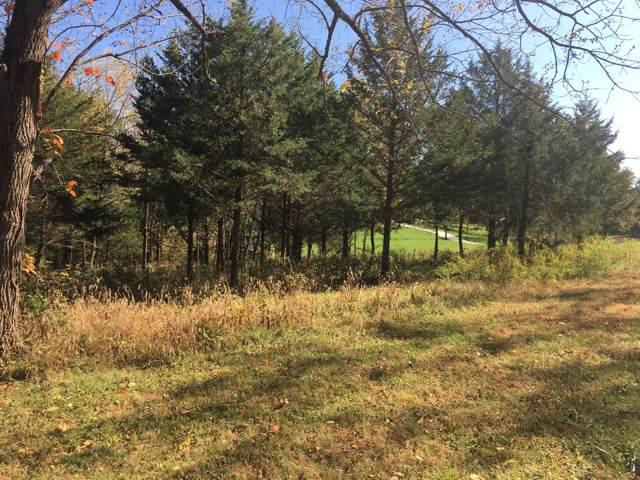 Lot 2 Walnut Hill Lane, Ozark, MO 65721 (MLS #60150191) :: Weichert, REALTORS - Good Life