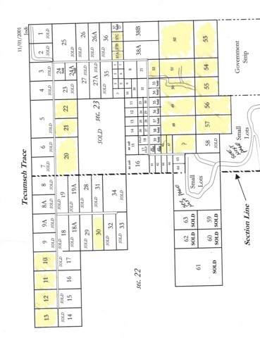 Tbd Lot 54 & Lot 55 Tecumseh Trace, Tecumseh, MO 65760 (MLS #60150262) :: Sue Carter Real Estate Group