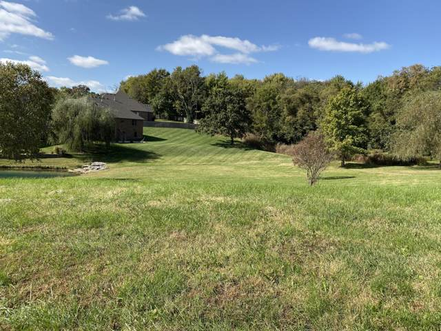 6225 S Haynes Avenue, Ozark, MO 65721 (MLS #60150401) :: Sue Carter Real Estate Group