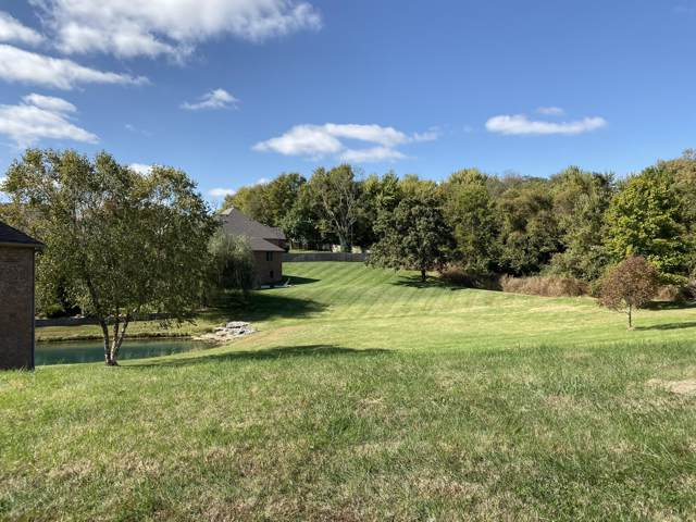 6219 S Haynes Avenue, Ozark, MO 65721 (MLS #60150405) :: Sue Carter Real Estate Group