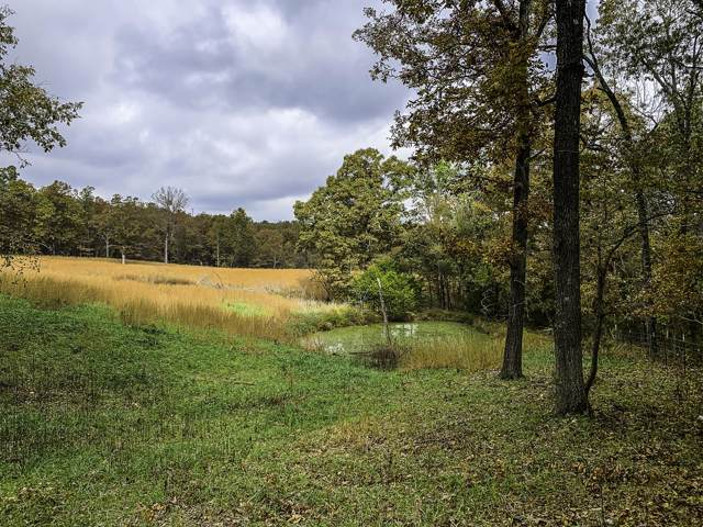 Tbd County Road 530, Gainesville, MO 65655 (MLS #60150730) :: Sue Carter Real Estate Group