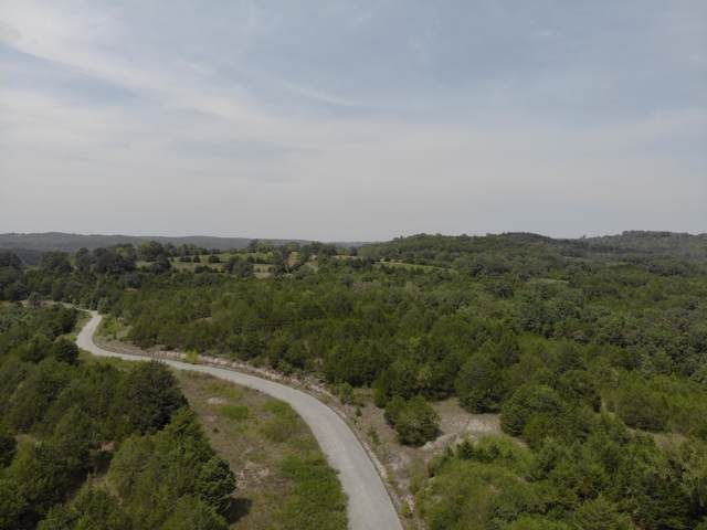 Lot 13 Mills Hollow Road, Branson, MO 65616 (MLS #60150771) :: United Country Real Estate
