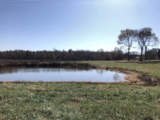 0 U Hwy, Dadeville, MO 65635 (MLS #60151112) :: Sue Carter Real Estate Group