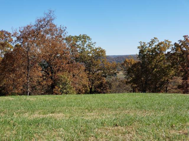 Lot 515 Forest View, Saddlebrooke, MO 65630 (MLS #60151238) :: Sue Carter Real Estate Group
