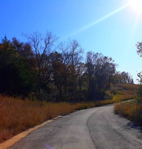 Lot 301 Emerald Isle Drive, Hollister, MO 65672 (MLS #60151289) :: Team Real Estate - Springfield