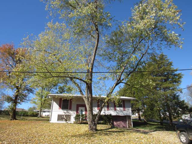 8635 State Highway 19, Winona, MO 65588 (MLS #60151356) :: Sue Carter Real Estate Group