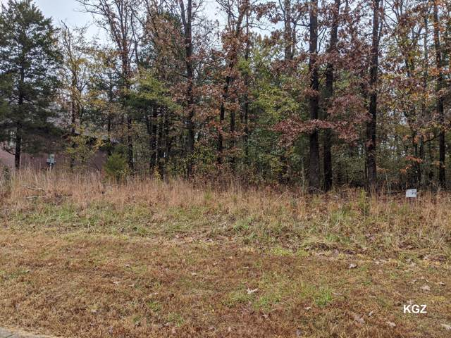 Lot 20 Beth Page Court, Branson, MO 65616 (MLS #60151466) :: Team Real Estate - Springfield