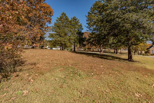 Lots 1 & 2 Walnut, Blue Eye, MO 65611 (MLS #60151520) :: Sue Carter Real Estate Group