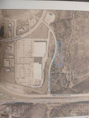 2.24 Acres Ozark Scenic Dr-Behind Targets, Branson, MO 65616 (MLS #60151523) :: Sue Carter Real Estate Group