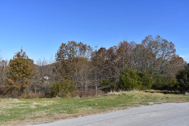 13 & 14 Ridgeview Road, Branson West, MO 65737 (MLS #60151543) :: Sue Carter Real Estate Group