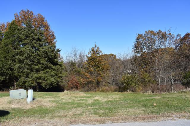 13 Ridgeview Road, Branson West, MO 65737 (MLS #60151577) :: Sue Carter Real Estate Group