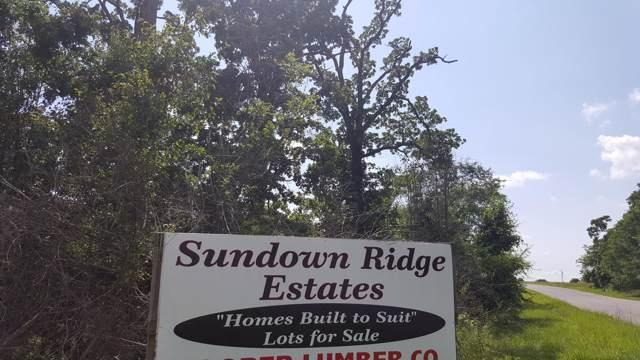 0 Kerr/Kenny/Brian Street, Ava, MO 65608 (MLS #60151620) :: Sue Carter Real Estate Group