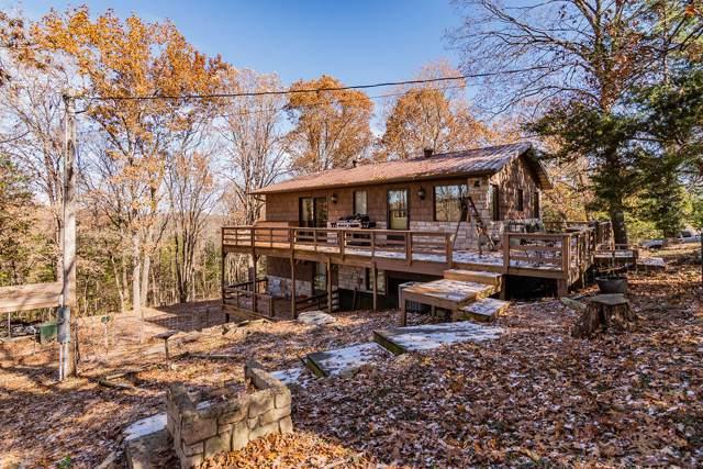 537 Watson Road, Branson, MO 65616 (MLS #60151813) :: Team Real Estate - Springfield