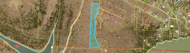 Lot 1-10 Power Line Ln, Galena, MO 65656 (MLS #60151818) :: Sue Carter Real Estate Group