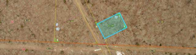 Lot 11 Power Line Ln, Galena, MO 65656 (MLS #60151820) :: Sue Carter Real Estate Group