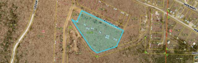 Lot 2-16 Power Line Ln, Galena, MO 65656 (MLS #60151822) :: Massengale Group