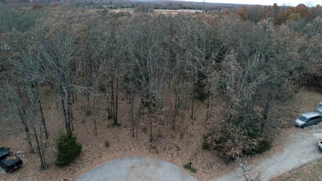 Lot 25 Briarwood, Marshfield, MO 65706 (MLS #60151859) :: Team Real Estate - Springfield