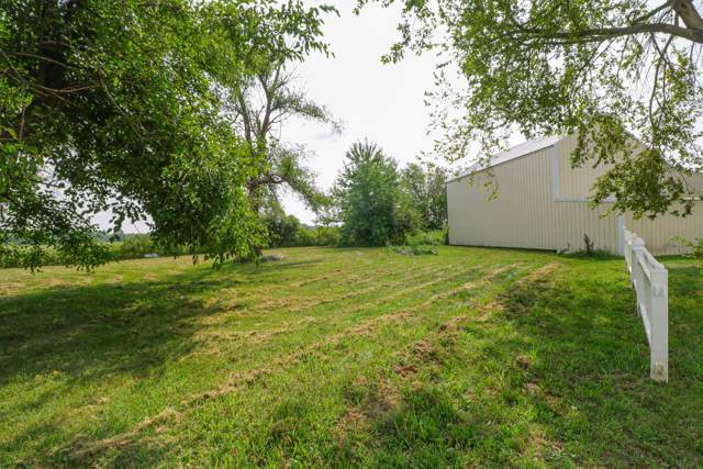 1231 E Clinton Road, Seymour, MO 65746 (MLS #60151892) :: Sue Carter Real Estate Group