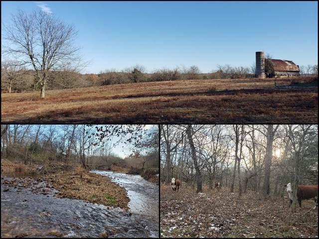 7494 N Farm Road 247, Strafford, MO 65757 (MLS #60152012) :: Team Real Estate - Springfield