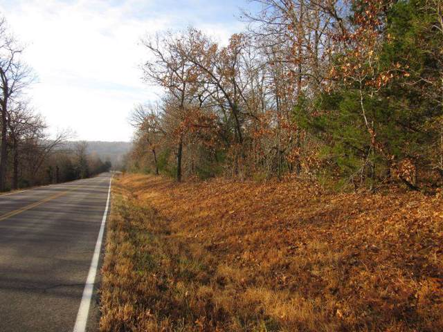 Tbd1 State Hwy 95, Thornfield, MO 65762 (MLS #60152094) :: The Real Estate Riders