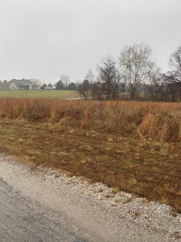 0 L9 Big Meadows Lane, Nixa, MO 65714 (MLS #60152223) :: Sue Carter Real Estate Group