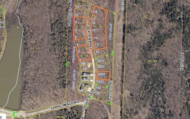 Lot 7 Cedar Glade Drive, Reeds Spring, MO 65737 (MLS #60152476) :: Sue Carter Real Estate Group