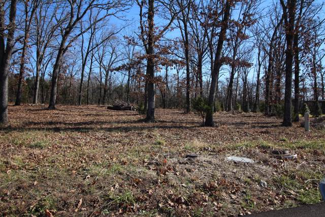 Lot 15 Cedar Glade Drive, Reeds Spring, MO 65737 (MLS #60152481) :: Sue Carter Real Estate Group