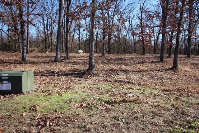 Lot 17 Cedar Glade Drive, Reeds Spring, MO 65737 (MLS #60152487) :: Sue Carter Real Estate Group