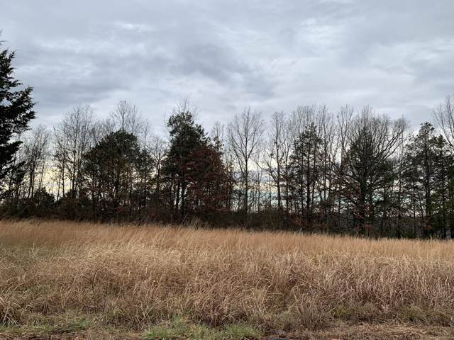 000 Lookout Road, Powersite, MO 65731 (MLS #60152495) :: Sue Carter Real Estate Group