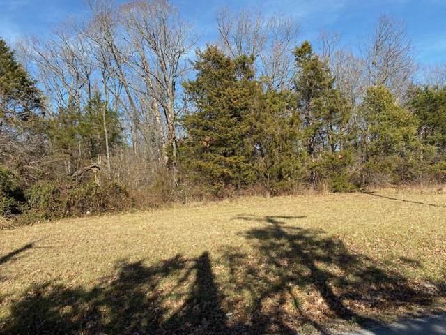 Tract 8 E Farm Rd 164, Rogersville, MO 65742 (MLS #60152556) :: Winans - Lee Team | Keller Williams Tri-Lakes