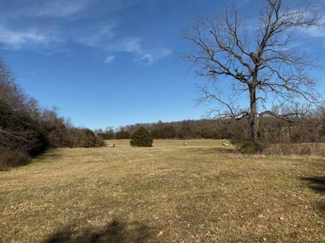 Tract 6 E Farm Rd 164, Rogersville, MO 65742 (MLS #60152571) :: Sue Carter Real Estate Group