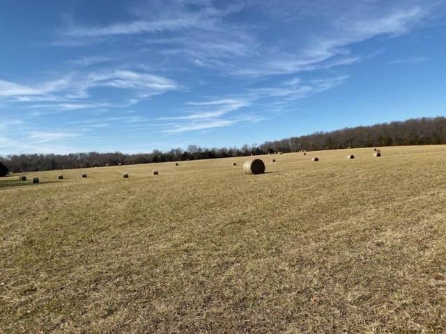 Tract 3 S Farm Rd 227, Rogersville, MO 65742 (MLS #60152576) :: Winans - Lee Team | Keller Williams Tri-Lakes