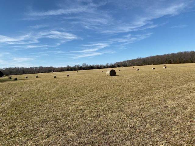 Tract 2 S Farm Rd 227, Rogersville, MO 65742 (MLS #60152577) :: Sue Carter Real Estate Group