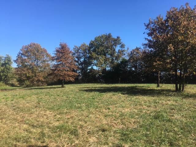 5 Ac Box School Loop, Seymour, MO 65746 (MLS #60152614) :: Sue Carter Real Estate Group