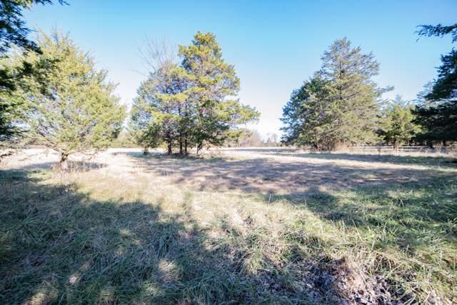 0 E Iris Meadow Lane, Rogersville, MO 65742 (MLS #60152670) :: Weichert, REALTORS - Good Life