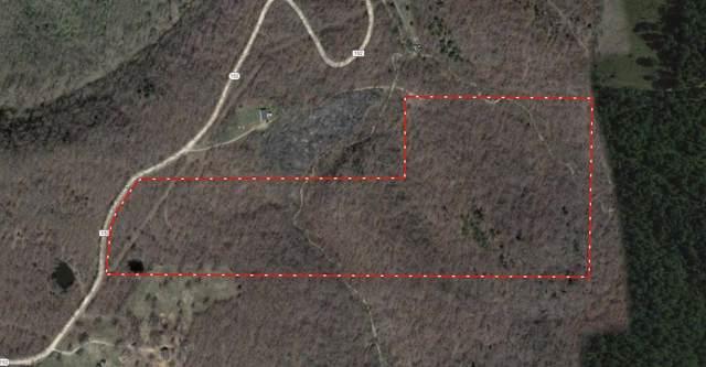 000 County Road 152, Alton, MO 65606 (MLS #60152683) :: Sue Carter Real Estate Group