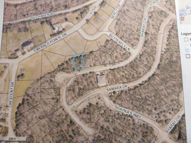 Lot 275-Phase 8 Sharay Circle - Emerald Point, Hollister, MO 65672 (MLS #60152686) :: Weichert, REALTORS - Good Life