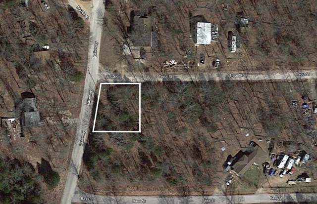 Tbd Lot 1 Trout Street, Kissee Mills, MO 65680 (MLS #60152728) :: The Real Estate Riders