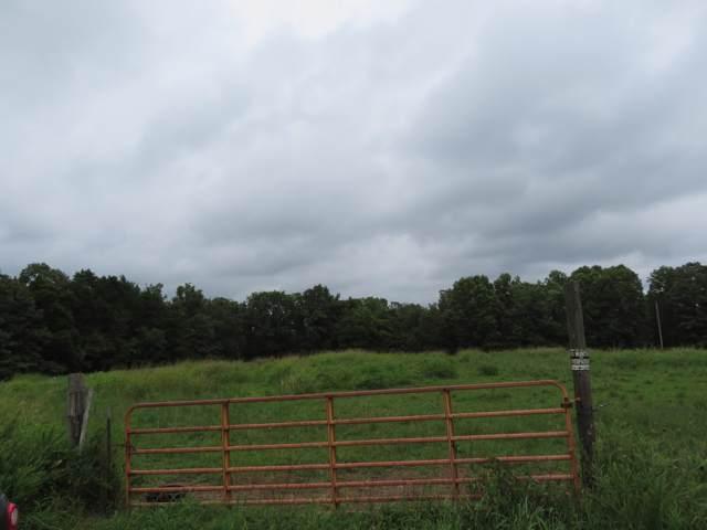 000 Ab Fine, Cedar Creek, MO 65627 (MLS #60152788) :: Weichert, REALTORS - Good Life